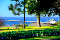 Thyme by the Bay in Fairhope for Alabama Magazine